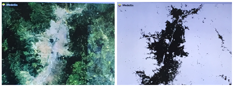 Figure 1. Automated mapping of urban areas presented by the European Space Agency. The image on the left is the source image (Landsat) and the image on the right is the result of the automated mapping process.